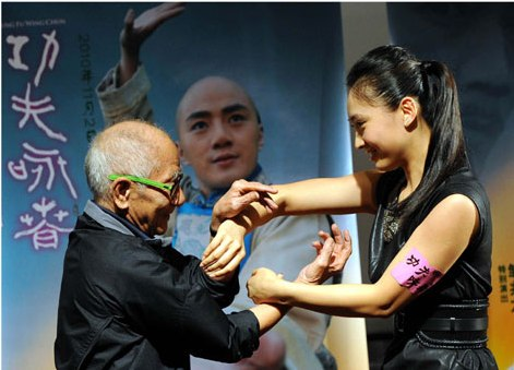 Image result for wing chun Bai Jing